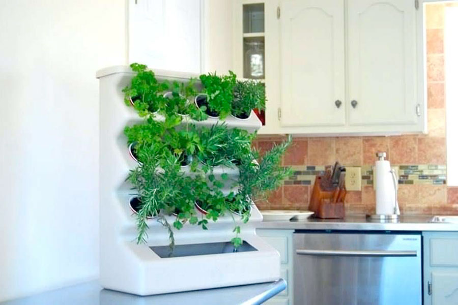 A Guide to Indoor Herb Gardens