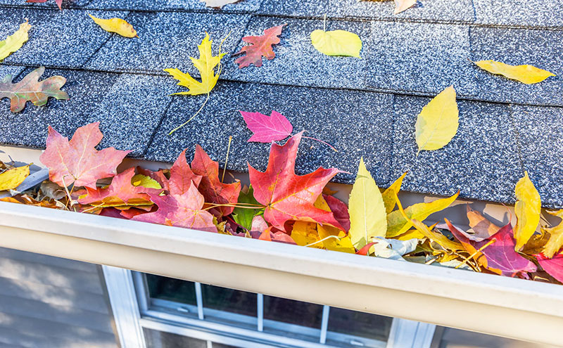 Clean your gutters and avoid the build up that can cause blockages