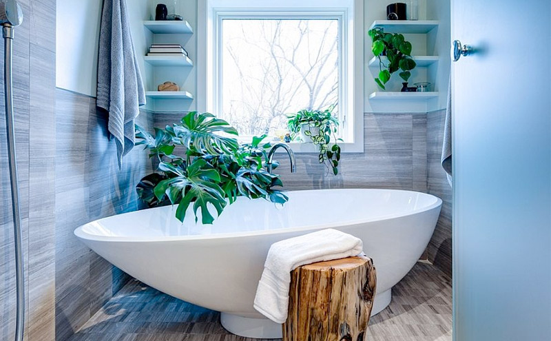 Greenery in the bathroom